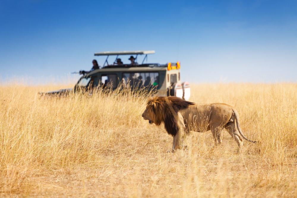 Tanzania-viajar-niños