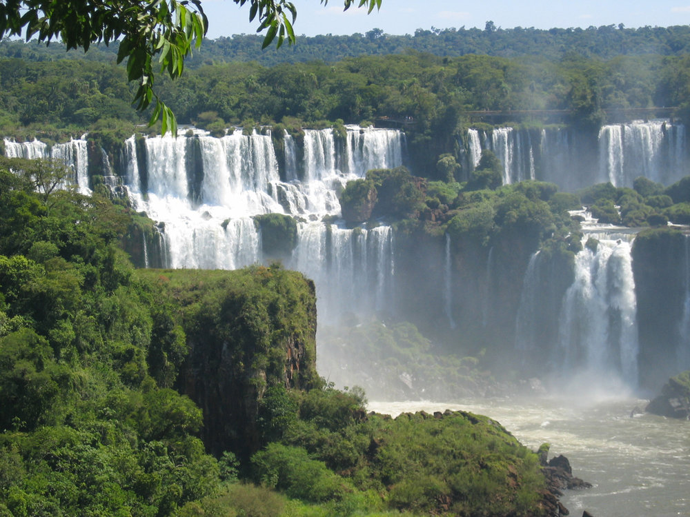 Selva-Argentina