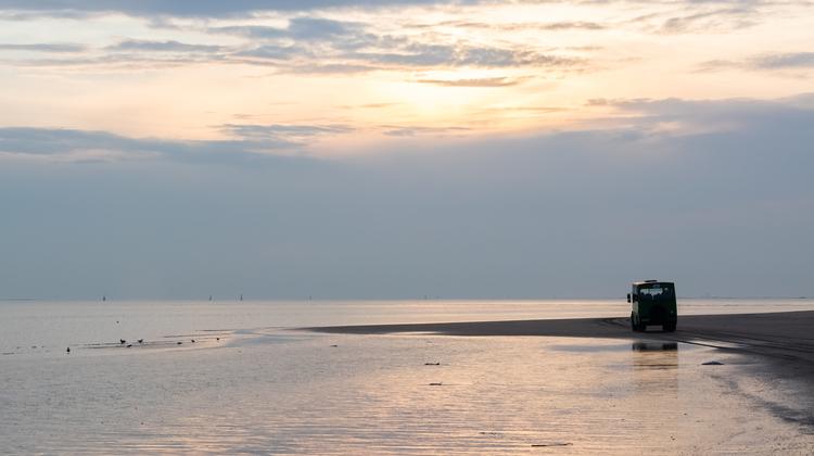 playa-de-doñana