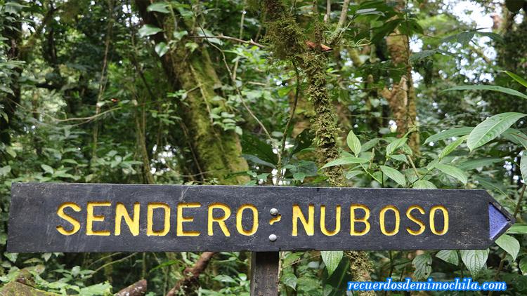 reserva-natural-Bosque-Nuboso-CostaRica