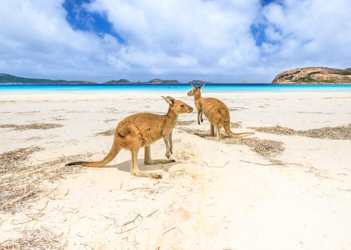 viaje-novios-australia