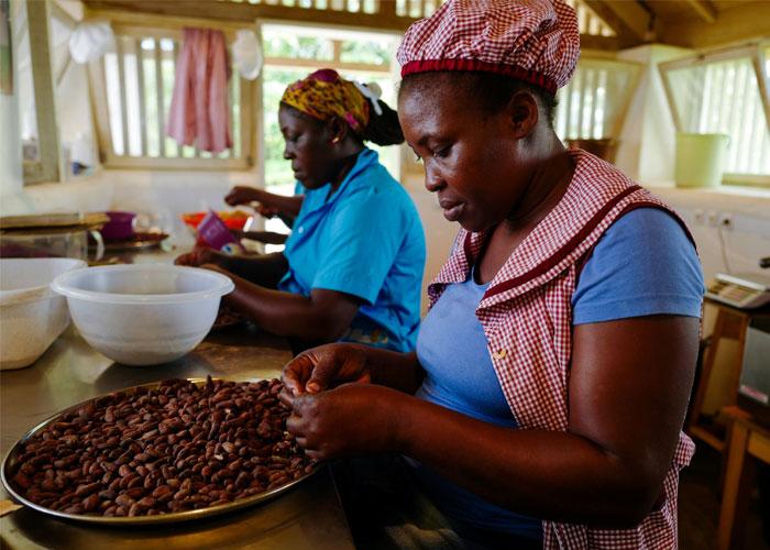 santo-tome-turismo-cacao
