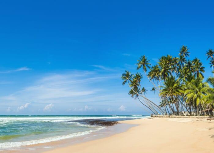 viaje-sri-lanka-playa