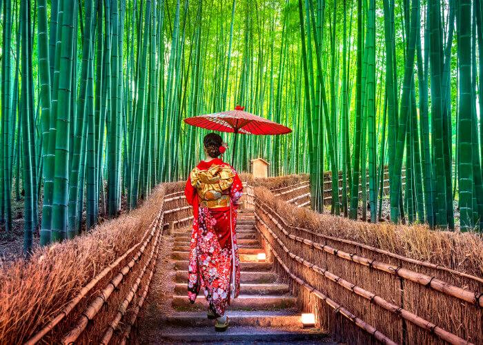 geisha-japon
