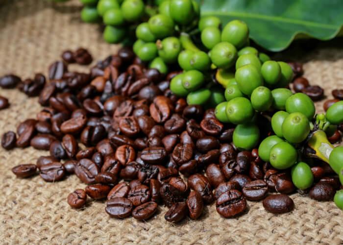 cafe-colombiano-diez-razones-colombia