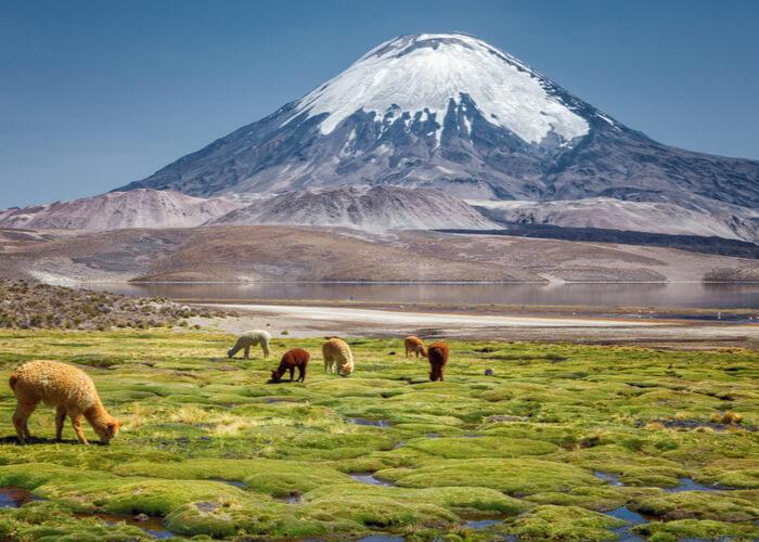Viaje_Chile