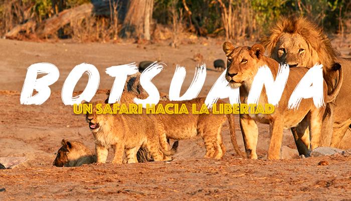 safari-botsuana-viaje