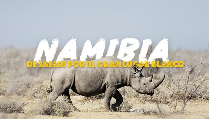 safari-namibia-viaje