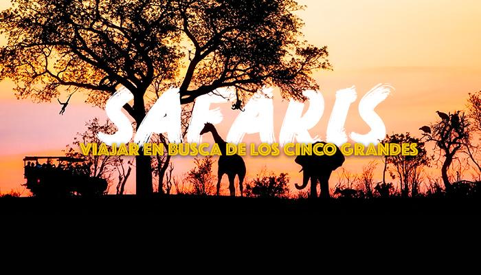 viaje-safari-africa-destino