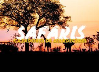 viaje-safari-destinos