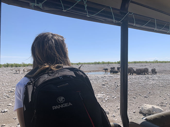 safari-etosha-viaje-namibia