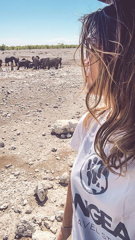 safari-namibia-carmen-etosha