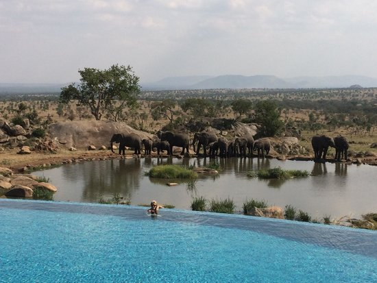 four-seasons-tanzania