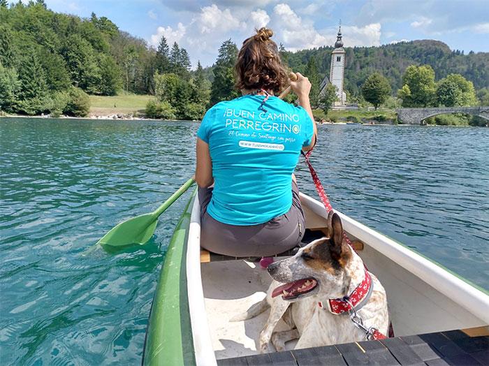viaje-eslovenia-perro