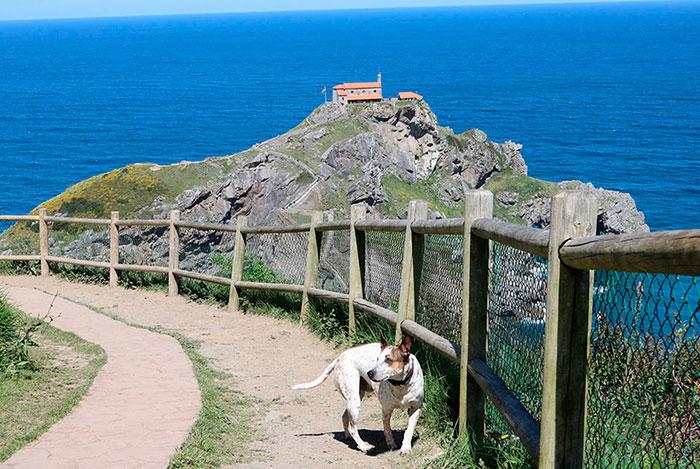 viaje-gaztelugatxe-perro