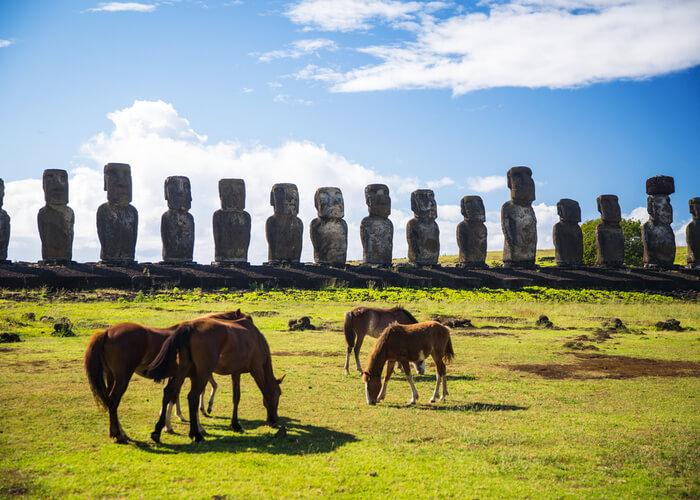 viaje-isla-pascua-caballos