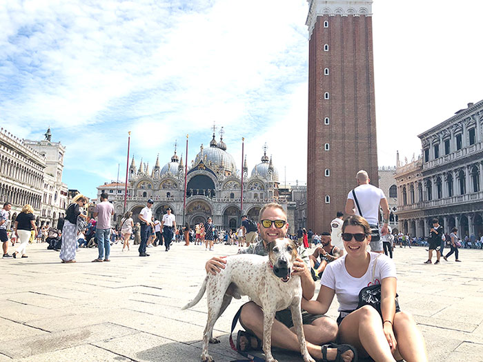 viaje-venecia-perro