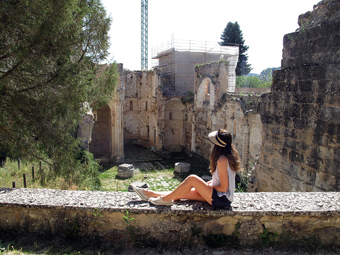 Monasterio-Arlanza-monumento
